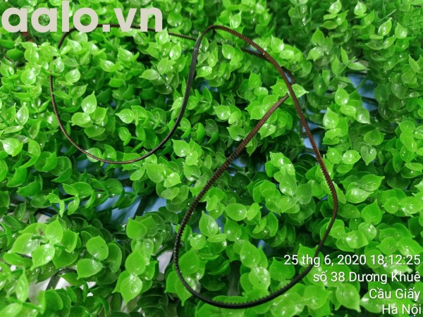 Dây curoa Máy in phun Canon Pixma G1000 - aalo.vn